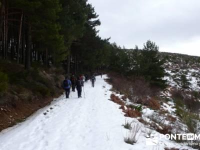 Somosierra - Camino a Montejo;excursiones montaña madrid;senderos madrid
